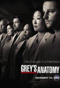 grey`s anatomy tv series