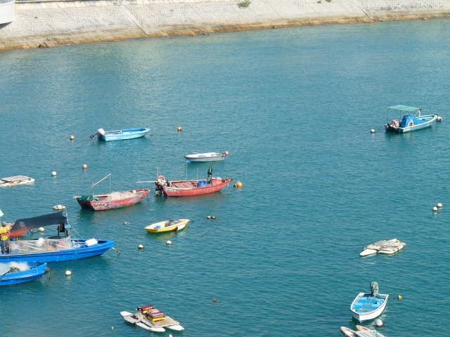 Fishing boats off of Stanley harbor :)