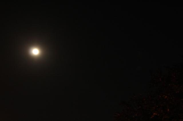 Full moon on Sept 19 :)