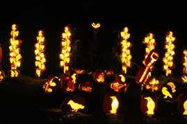 Pumpkin Inferno 2013