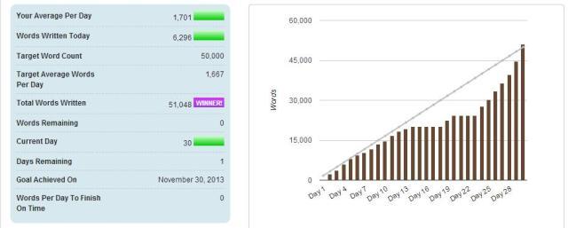 2013 nanowrimo stats