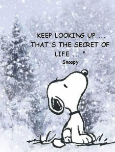 keep looking up snoopy