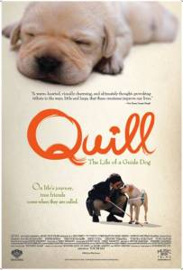quill poster