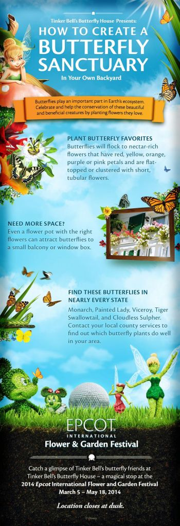 butterfly sanctuary