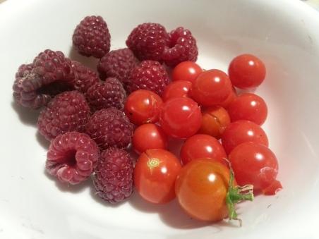 Raspberry and Tomato