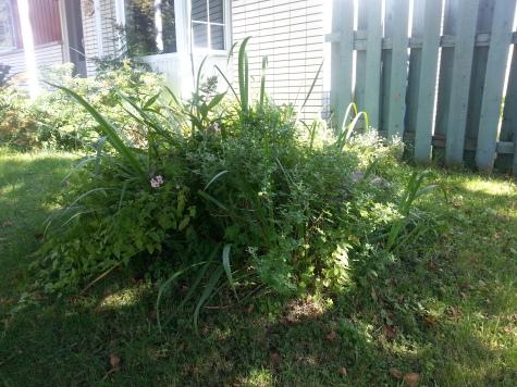 Garden Mission