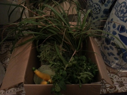 Vegetable Herb Harvest
