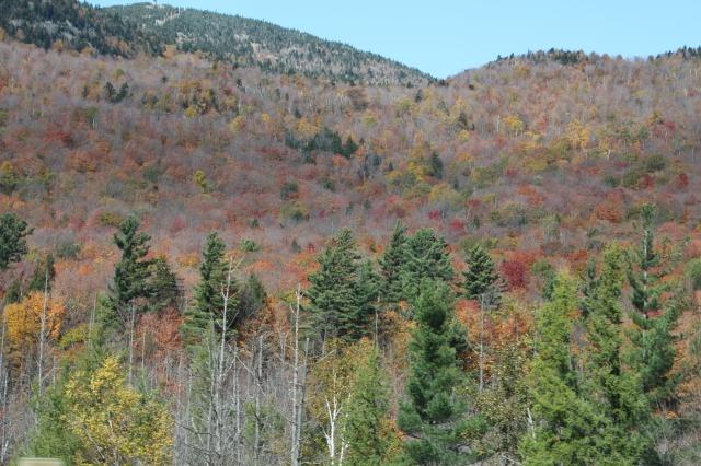 Autumn in Quebec
