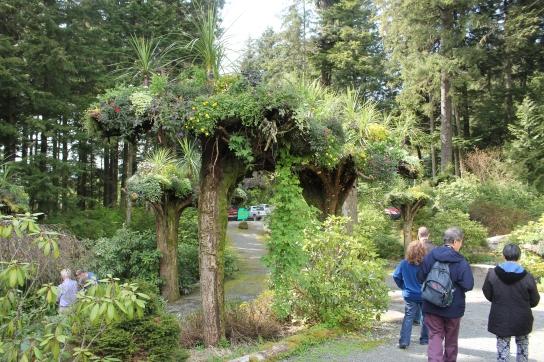 Glacier Gardens