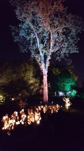 Gardens of Light