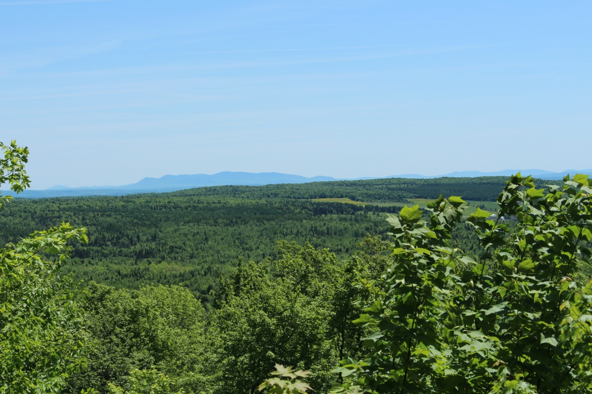 Parc Regional Mont Ham