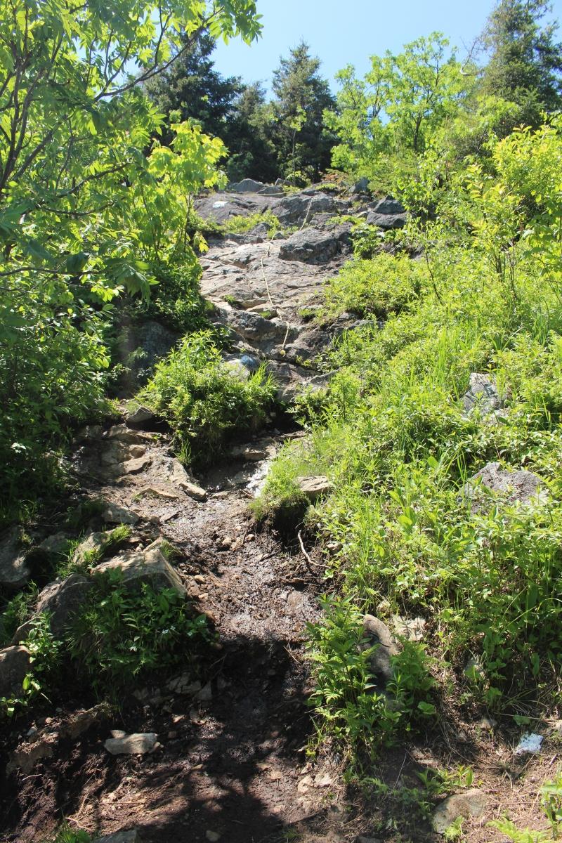 Parc Regional du Mont-Ham